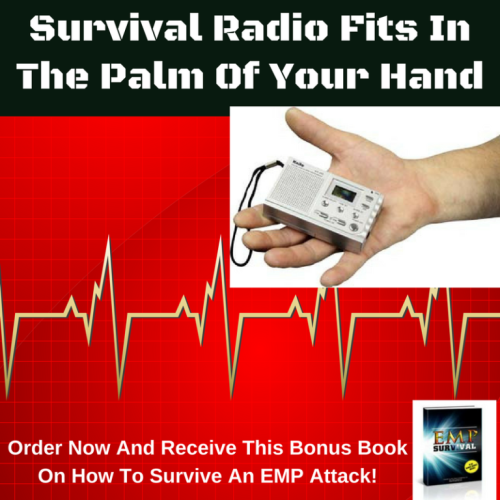 Survival-Radio-Fits-In-The-Palm-Of-Your-Hand-1-768x768